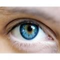 Стволовые клетки восстанавливают зрение